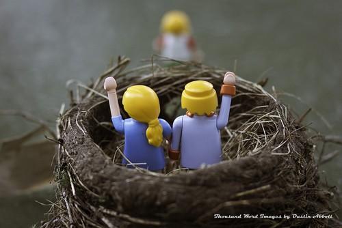 La sindrome del nido vuoto?