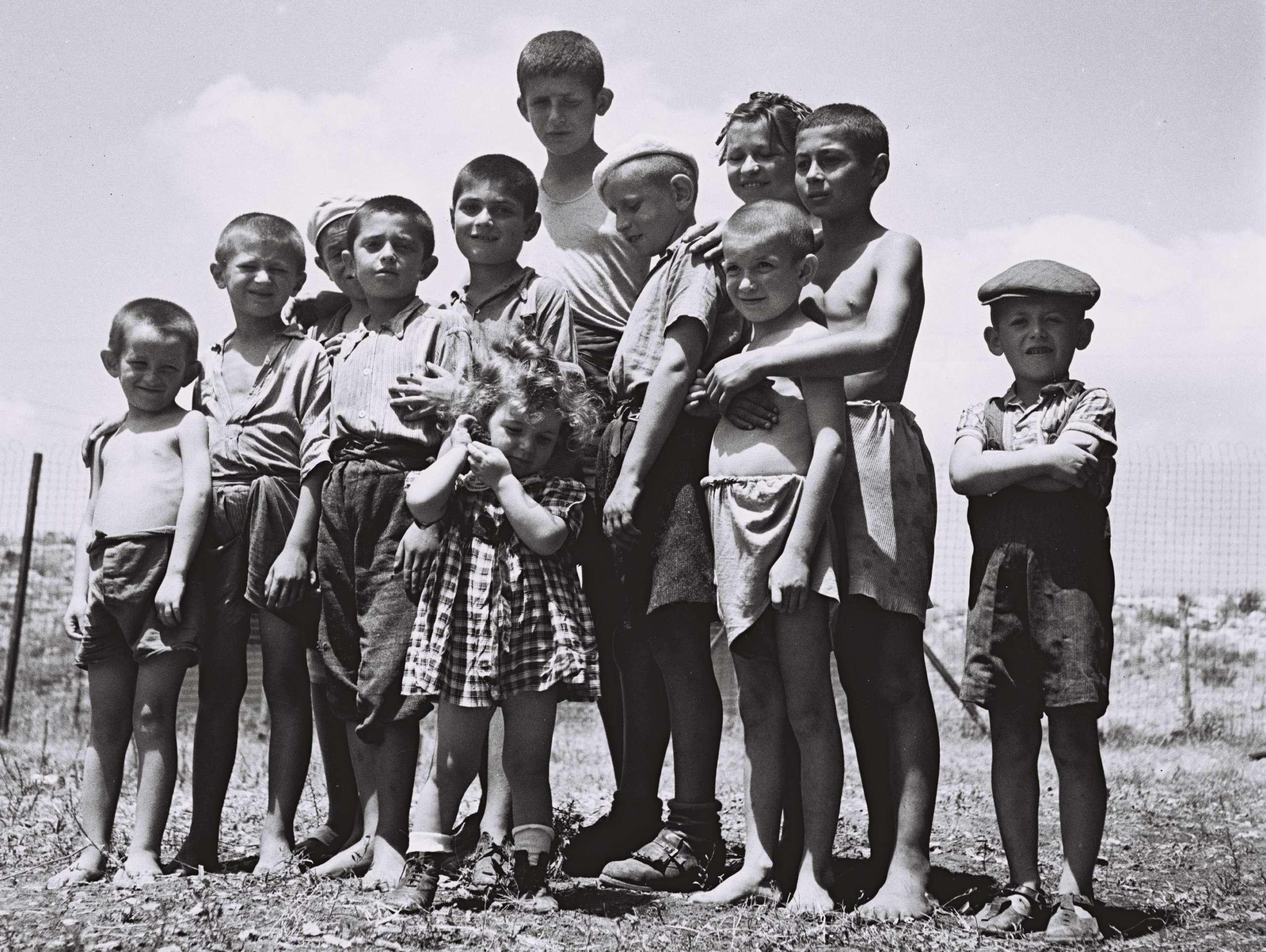 educazione olocausto stati uniti